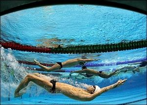 _42381388_swimmers416