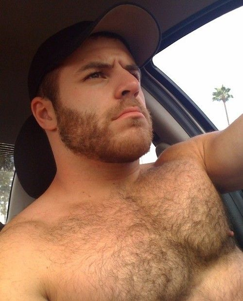 Driving_hunk