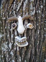 Tree_face_2